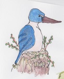 Northland kingfisher